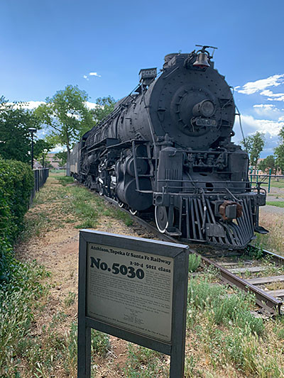Salvador Perez park train